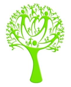 дерево познания